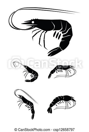 矢量-虾, 放置, 收集