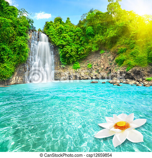 Lotus flower in waterfall pool - csp12659854