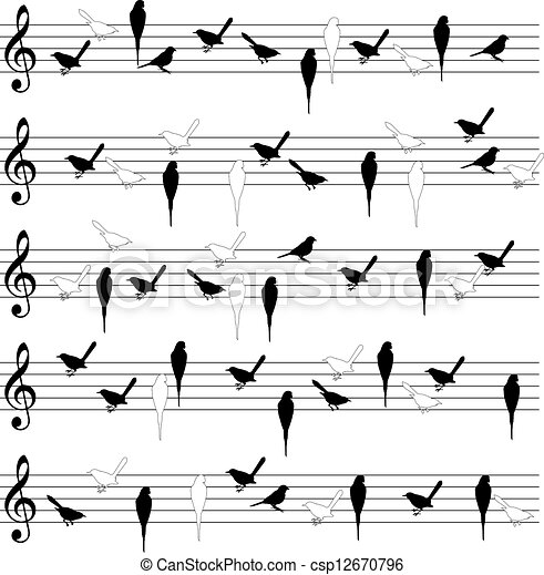 Bird notation lines - csp12670796