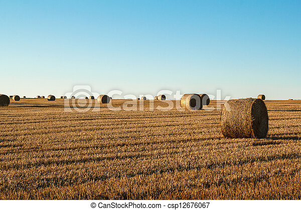 hay bale in the foreground of rural field - csp12676067