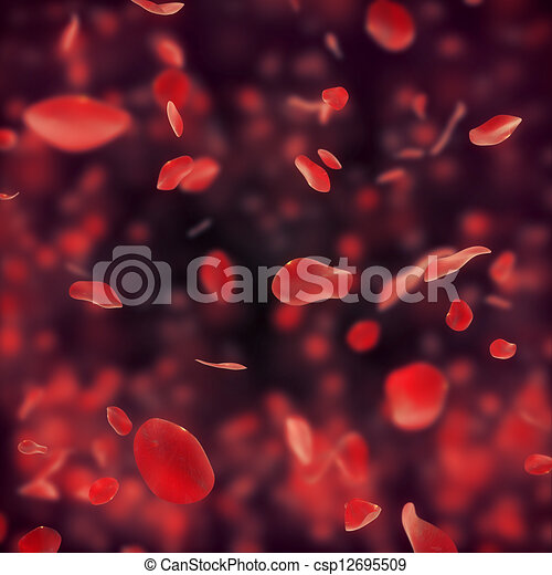 Falling red rose petals on dark bac - csp12695509