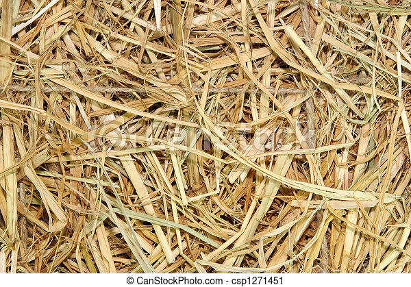 Straw - csp1271451