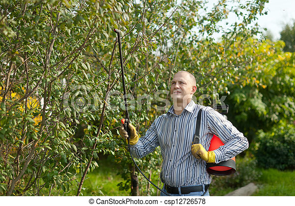 Man spraying tree plant   - csp12726578