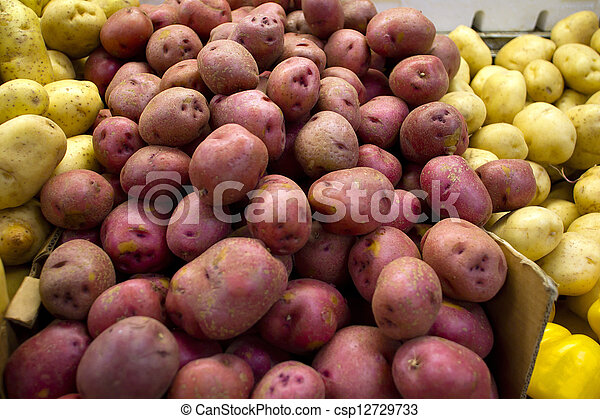 red and white potatoes for sale