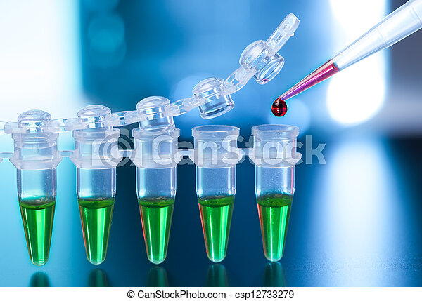 Loading of PCR samples in numbered plastic tubes