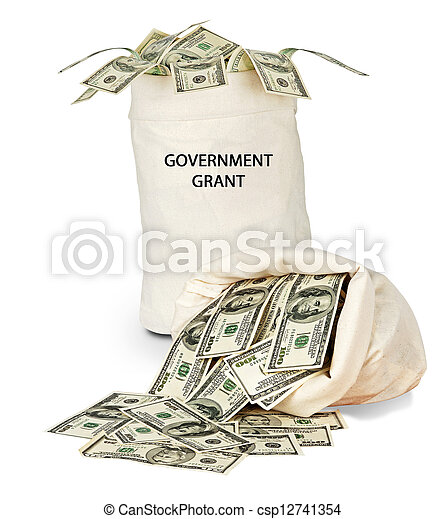 Government grant - csp12741354