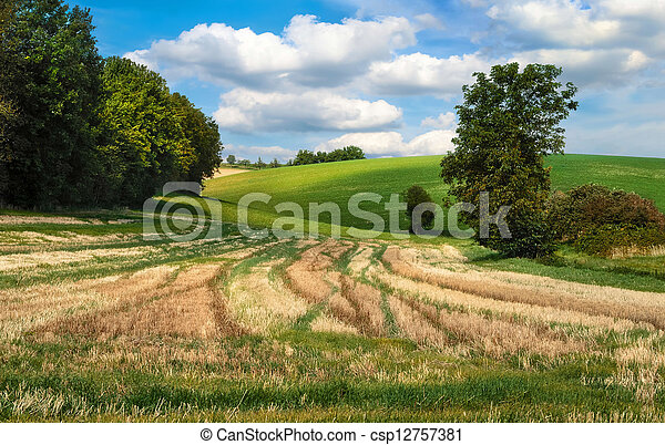 Idyllic rural landscape - csp12757381