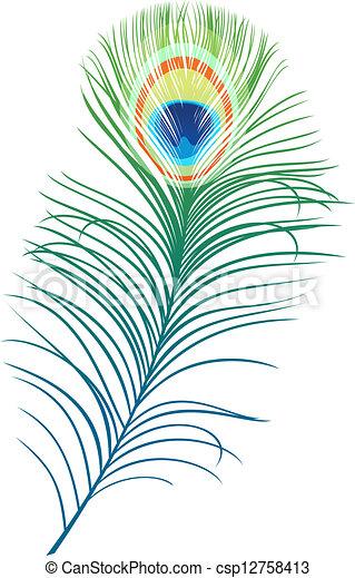 clip art vecteur de paon plume plume de paon oiseau. Black Bedroom Furniture Sets. Home Design Ideas
