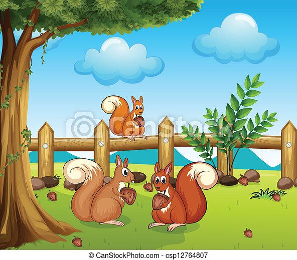 Білки зайців пригощали 406 морквину подавали