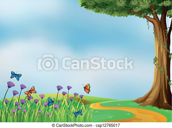 Butterflies and a beautiful nature - csp12765017