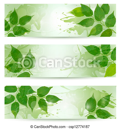 Three nature background with green spring leaves. Vector illustration. - csp12774187