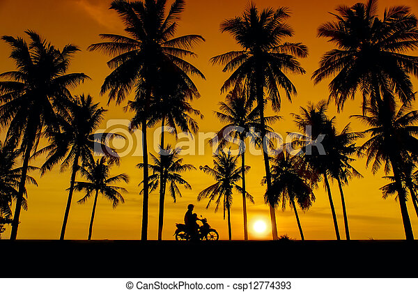 great sunset and tree silhouette - csp12774393