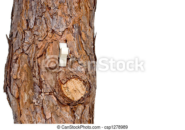 Lightswitch in a tree trunk - csp1278989