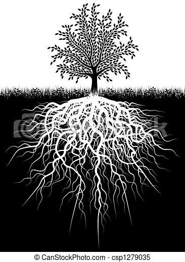 Illustrations de arbre, racines - Illustration, de, a ...