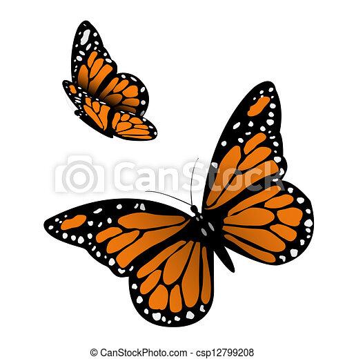 Monarca trabajos de ilustración de imágenes. 4 412 Monarca ...