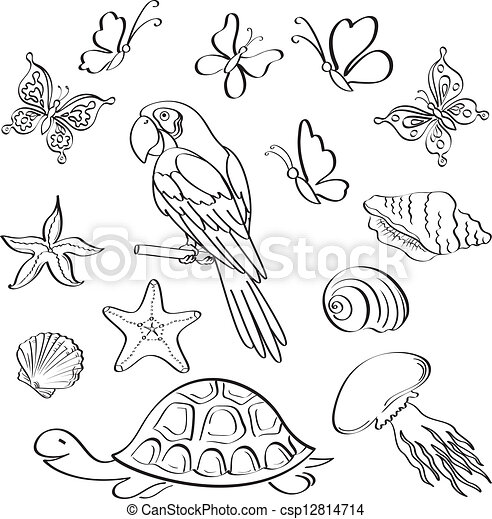 Art Outline Drawings Exotic Fauna Outline Set