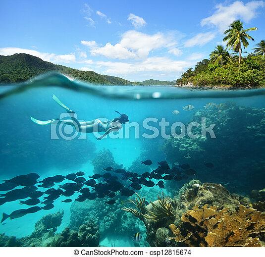 Beautiful Coral reef