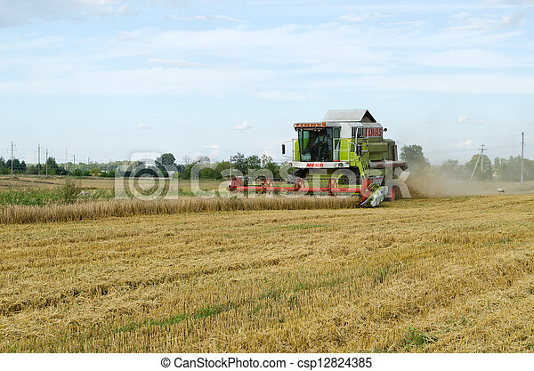 combine tractor harvest wheat agriculture field  - csp12824385