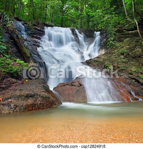 Wild jungle forest and scenery waterfall cascade with tropical plants. Nature background of Thailand evergreen national park - csp12824918