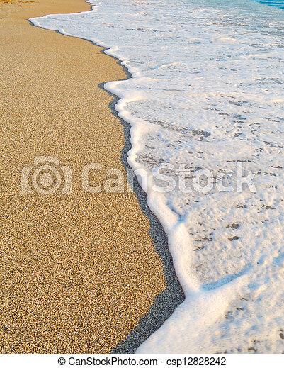 Sandy Beach and Foamy Surf - csp12828242