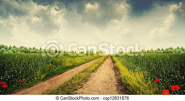 Beauty evening. Rural landscape por your design - csp12831876