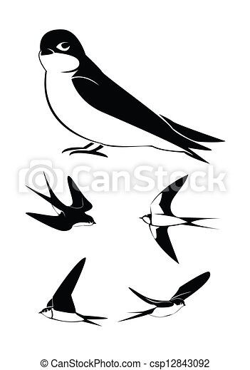 eps vectors of swallow collection set csp12843092 search