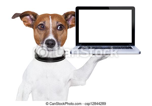 computer dog - csp12844289
