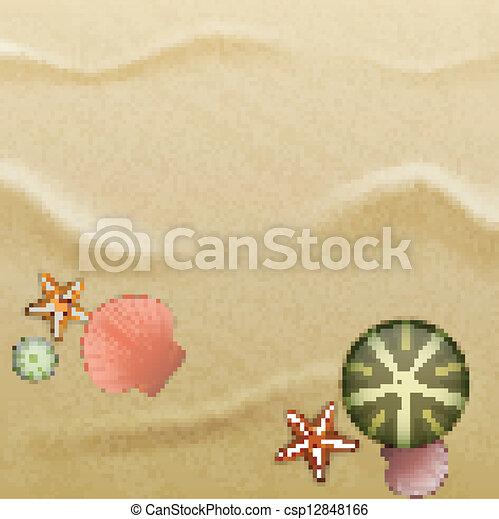 Seashells on sand, background - csp12848166