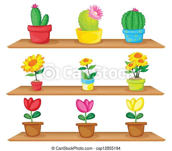Plantas ornamentales nombres y dibujos imagui for 5 nombres de plantas ornamentales