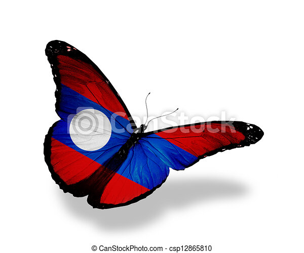 Laotian flag butterfly flying, isolated on white background - csp12865810
