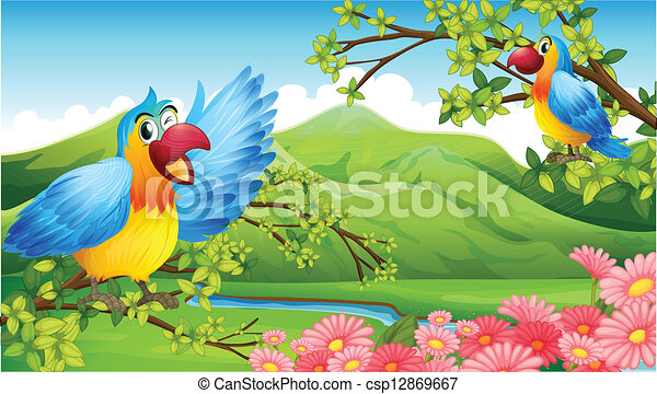 Bird Scenery Drawing Scenery Stock Illustration