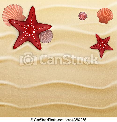 Seashells on sand, background - csp12882365