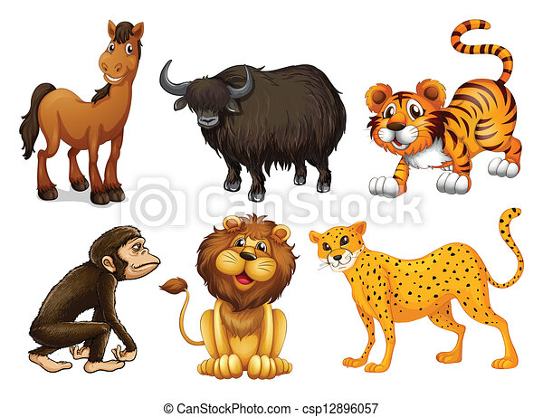 Different kinds of four-legged animals - csp12896057