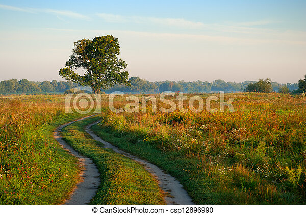 rural road in a field and remote fog - csp12896990