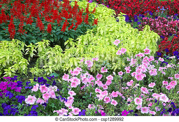 flower landscaping - csp1289992