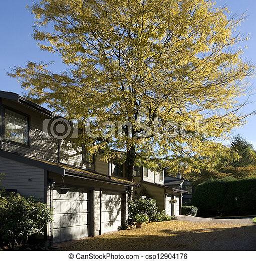 Townhouses in the city, residential area in Burnaby, BC - csp12904176