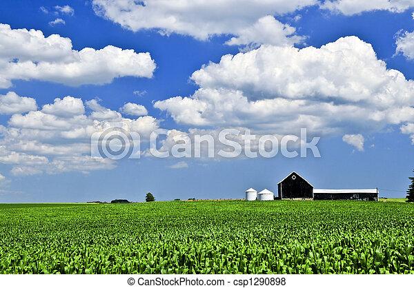 Rural landscape - csp1290898