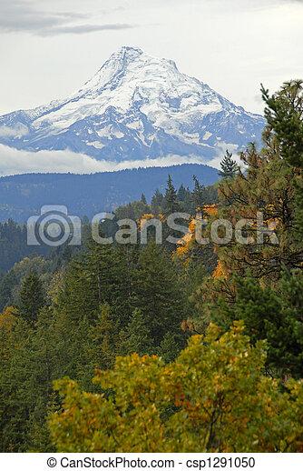 Mount Hood - csp1291050