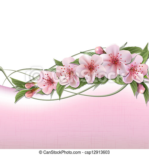 Spring background with pink cherry flowers - csp12913603