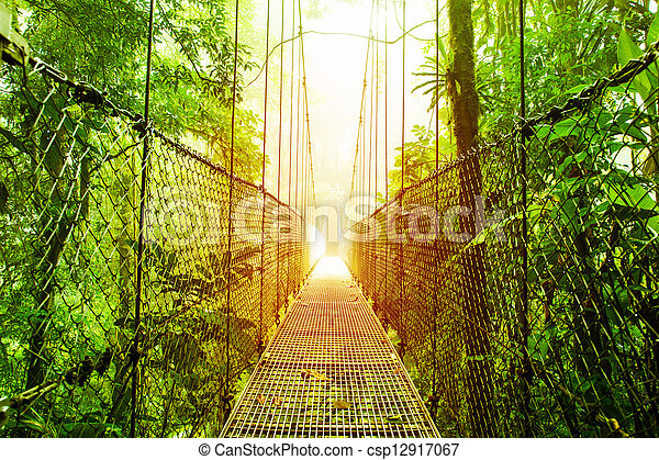 Arenal Hanging Bridges park of Costa Rica - csp12917067