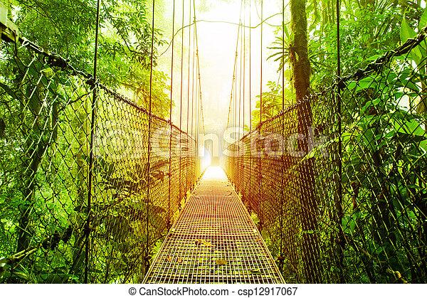 Arenal Hanging Bridges park of Costa Rica - csp12917067