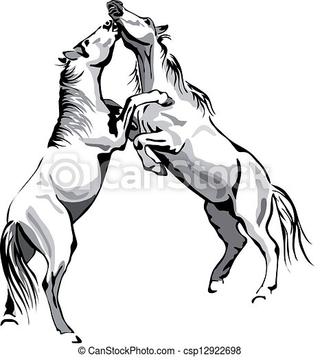 lucha, caballos,  -, negro, y, blanco,  vector, contorno - csp12922698
