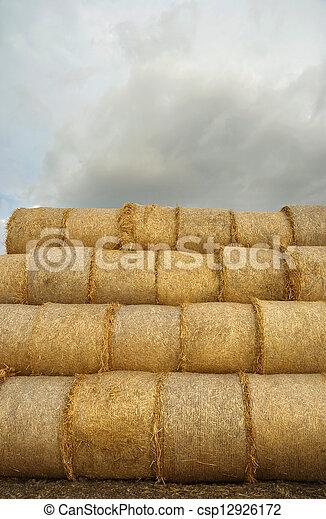Agriculture - csp12926172
