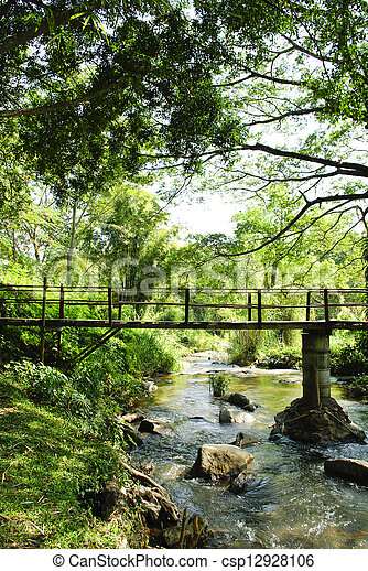 Bridges, bamboo, tropical rain forests, Thailand - csp12928106