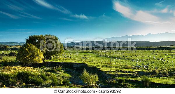 Panoramic view of rural scenery - csp1293592