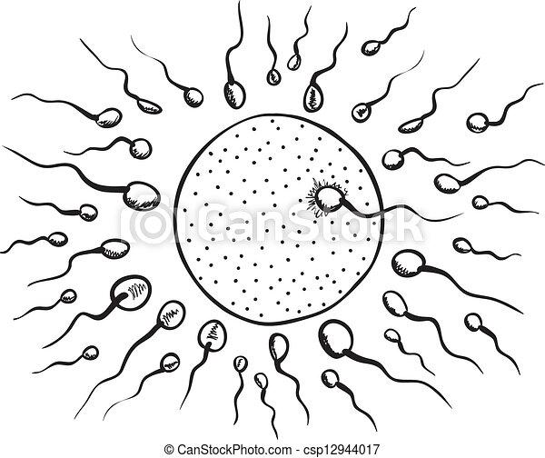 Vector Clip Art de Ilustración, de, fecundación - Ilustración, de ...