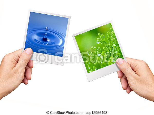 Environment Concept, Hands holding nature photos water and plant - csp12956493