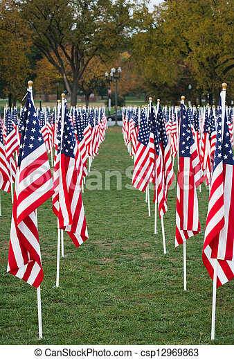 US Flags in a park