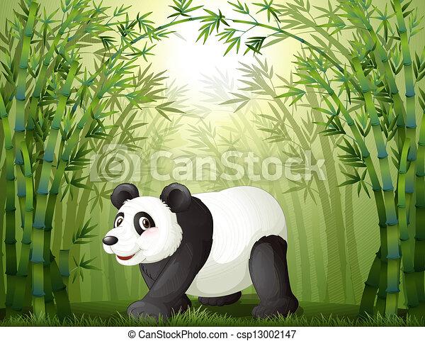 Bamboo Trees With a Panda