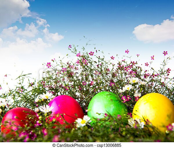 Colorful easter eggs on grass and flower - csp13006885